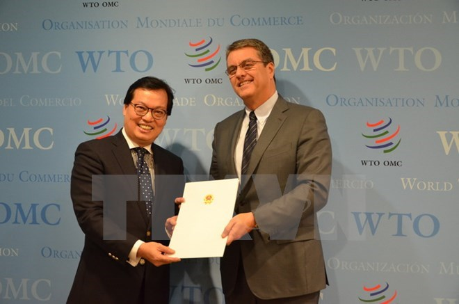 wto and vietnam General introduction on vietnam's wto commitments after 14 formal meetings  from 1998 to 2006, vietnam finally entered into the wto in 2007 as a result.