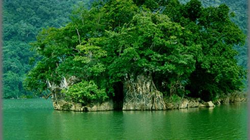 Ba Be National Park, an attraction in Bac Kan, travel news, Vietnam guide, Vietnam airlines, Vietnam tour, tour Vietnam, Hanoi, ho chi minh city, Saigon, travelling to Vietnam, Vietnam travelling, Vietnam travel, vn news