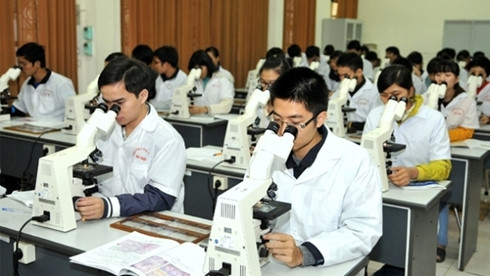 VN education sector and comprehensive reform efforts
