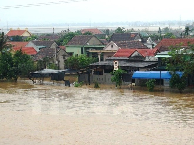 Ministry warns of disease outbreak in floods aftermath, HCM City releases centurial literary project, Tons of clams wash up on beach in Ha Tinh Province, WB specialist believes in first BRT route's effects in Hanoi