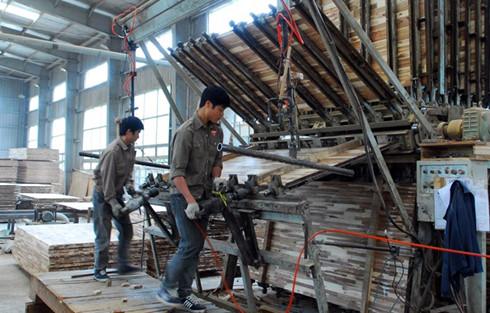 Wood exports inch up, but prospects cloudy, vietnam economy, business news, vn news, vietnamnet bridge, english news, Vietnam news, news Vietnam, vietnamnet news, vn news, Vietnam net news, Vietnam latest news, Vietnam breaking news