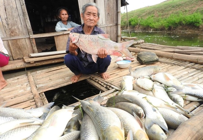 Polluted water causes mass clam deaths in Thanh Hoa, environmental news, sci-tech news, vietnamnet bridge, english news, Vietnam news, news Vietnam, vietnamnet news, Vietnam net news, Vietnam latest news, Vietnam breaking news, vn news