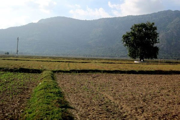 Climate change, saltwater, water resources, Vietnam economy, Vietnamnet bridge, English news about Vietnam, Vietnam news, news about Vietnam, English news, Vietnamnet news, latest news on Vietnam, Vietnam