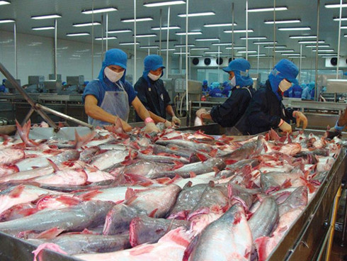 Series of Vietnamese exporters fall prey to Canadian scammer company, vietnam economy, business news, vn news, vietnamnet bridge, english news, Vietnam news, news Vietnam, vietnamnet news, vn news, Vietnam net news, Vietnam latest news, Vietnam breaking n
