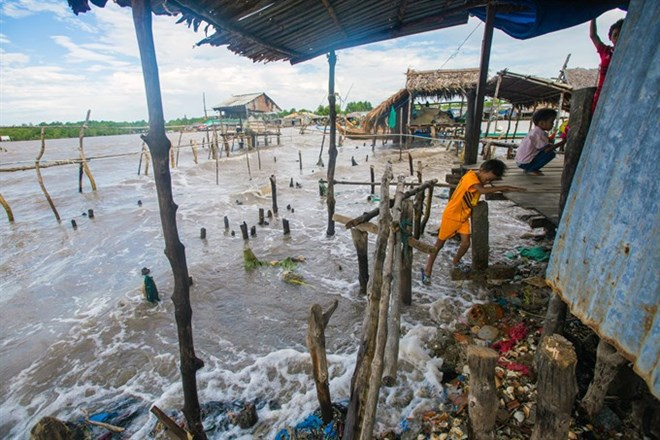 Southernmost province moves to fight coastal erosion, environmental news, sci-tech news, vietnamnet bridge, english news, Vietnam news, news Vietnam, vietnamnet news, Vietnam net news, Vietnam latest news, Vietnam breaking news, vn news