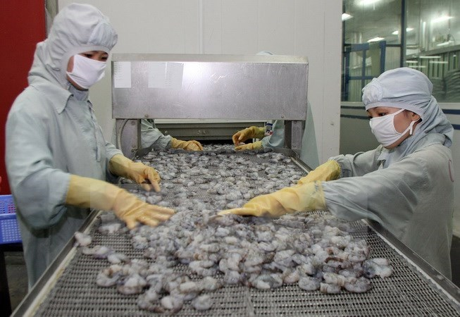 Australia relaxes ban on shrimp import, vietnam economy, business news, vn news, vietnamnet bridge, english news, Vietnam news, news Vietnam, vietnamnet news, vn news, Vietnam net news, Vietnam latest news, Vietnam breaking news