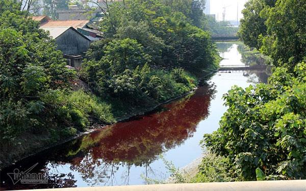 Environmental pollution, wastewater treatment systems, Vietnam economy, Vietnamnet bridge, English news about Vietnam, Vietnam news, news about Vietnam, English news, Vietnamnet news, latest news on Vietnam, Vietnam