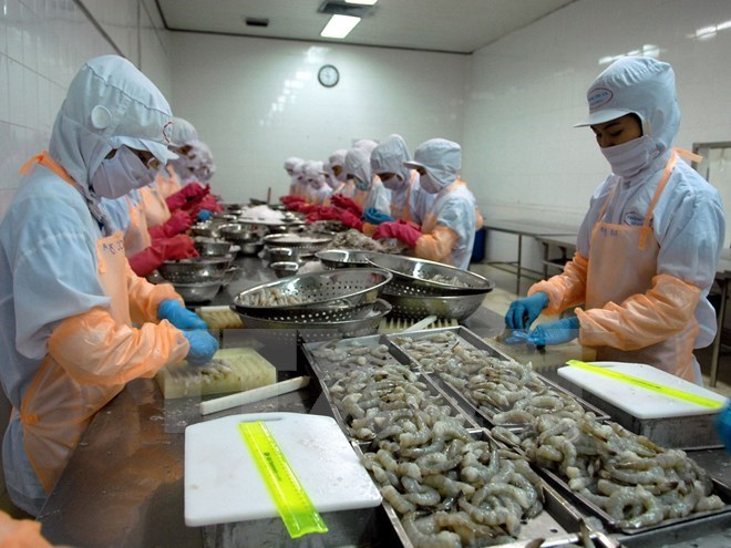 VN Trade Ministry urges Australia to lift ban on shrimp imports, vietnam economy, business news, vn news, vietnamnet bridge, english news, Vietnam news, news Vietnam, vietnamnet news, vn news, Vietnam net news, Vietnam latest news, Vietnam breaking news