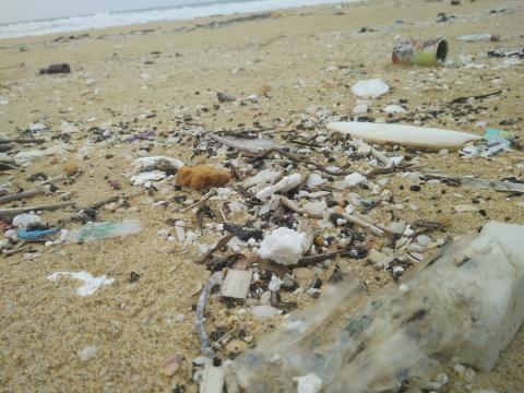 Oil clumps cover beach in Quang Nam, environmental news, sci-tech news, vietnamnet bridge, english news, Vietnam news, news Vietnam, vietnamnet news, Vietnam net news, Vietnam latest news, Vietnam breaking news, vn news