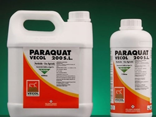 Paraquat, chemical weed killer, ban, Vietnam economy, Vietnamnet bridge, English news about Vietnam, Vietnam news, news about Vietnam, English news, Vietnamnet news, latest news on Vietnam, Vietnam