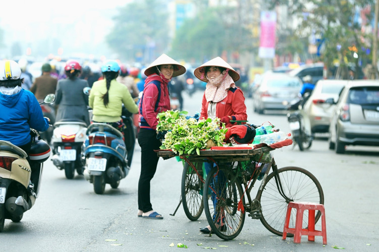 Hanoi scented with grapefruit flowers