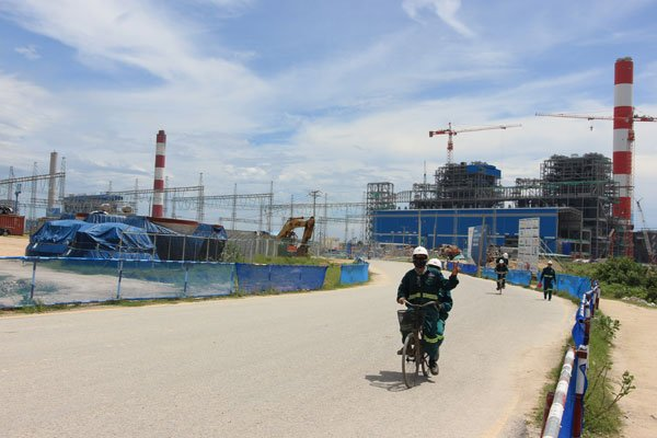 Coral reefs relocated en masse for Vinh Tan power project, vietnam economy, business news, vn news, vietnamnet bridge, english news, Vietnam news, news Vietnam, vietnamnet news, vn news, Vietnam net news, Vietnam latest news, Vietnam breaking news