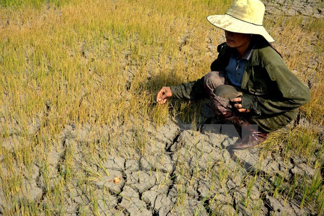 Solutions sought for population, labour migration in Mekong Delta