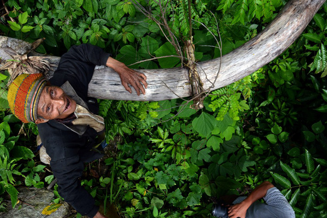 Vietnam's elderly man lives hermit life in jungle, social news, vietnamnet bridge, english news, Vietnam news, news Vietnam, vietnamnet news, Vietnam net news, Vietnam latest news, vn news, Vietnam breaking news