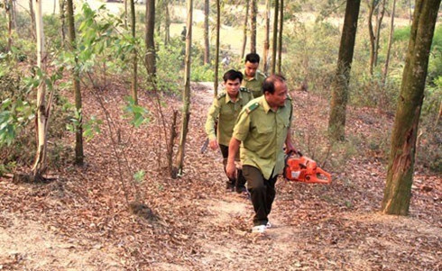 Agriculture Ministry orders expanded forest-fire protection in dry season