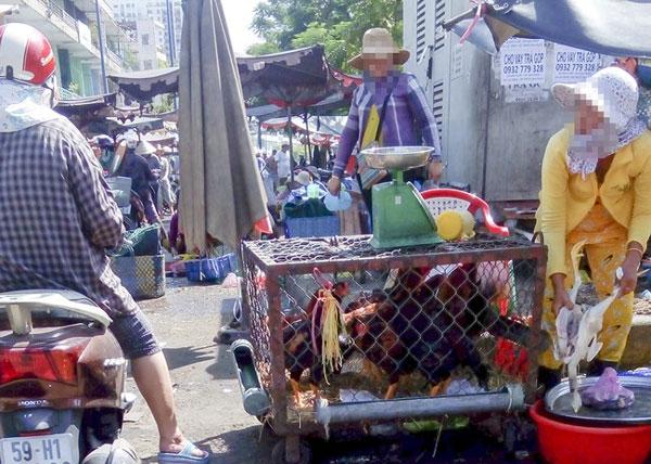 A/H5N1 bird flu outbreak, bird flu viruses, illegal poultry imports, Vietnam economy, Vietnamnet bridge, English news about Vietnam, Vietnam news, news about Vietnam, English news, Vietnamnet news, latest news on Vietnam, Vietnam