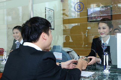VN banks foresee good profit in 2017