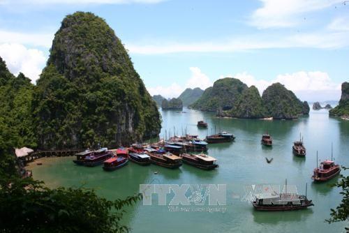 Six damaged boats stop operating in Ha Long Bay