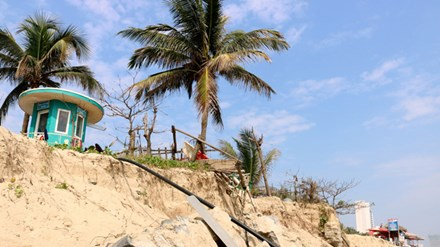 Vietnam's most beautiful beach My Khe faces erosion danger