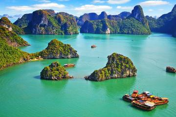 vietnam economy, business news, vn news, vietnamnet bridge, english news, Vietnam news, news Vietnam, vietnamnet news, vn news, Vietnam net news, Vietnam latest news, Vietnam breaking news,  Ha Long bay, MONRE