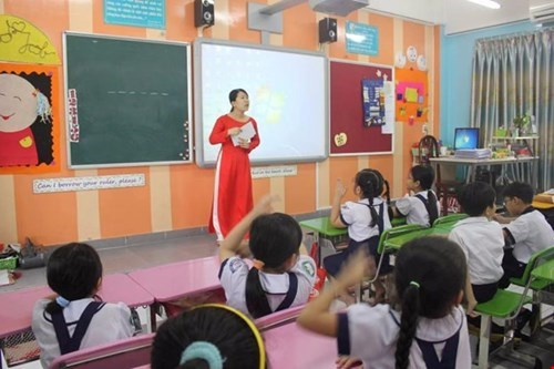 When will Vietnam eliminate junior pedagogical colleges?