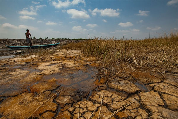 Mekong Delta, prevent drought, weather disasters, Vietnam economy, Vietnamnet bridge, English news about Vietnam, Vietnam news, news about Vietnam, English news, Vietnamnet news, latest news on Vietnam, Vietnam