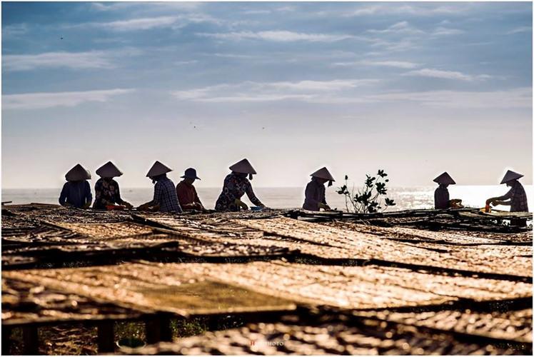 Phuoc Hai, a peaceful fishing village