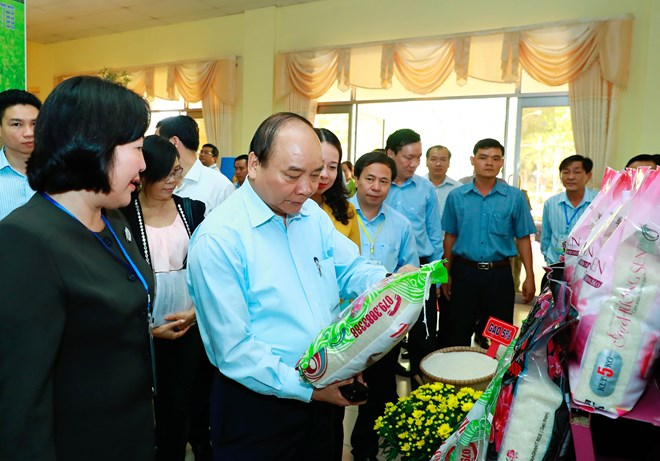 It's time to reform Vietnam's rice sector, says Prime Minister