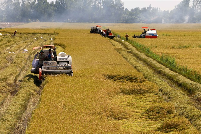 VN Gov't set to relax farmland ceiling, social news, vietnamnet bridge, english news, Vietnam news, news Vietnam, vietnamnet news, Vietnam net news, Vietnam latest news, vn news, Vietnam breaking news