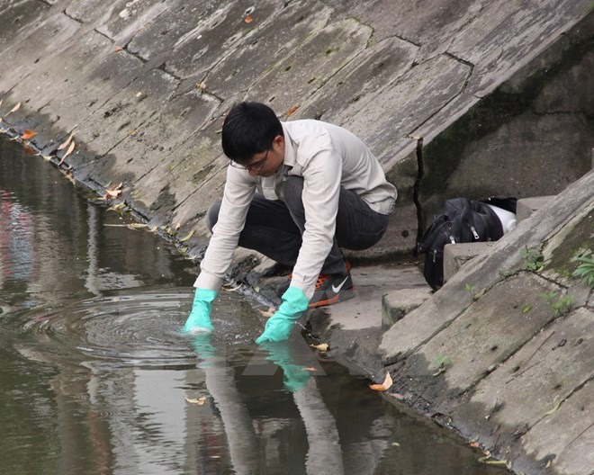 Polluted water killed fish in Thai Binh's river
