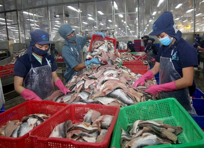 Unsafe produce hurting exports, vietnam economy, business news, vn news, vietnamnet bridge, english news, Vietnam news, news Vietnam, vietnamnet news, vn news, Vietnam net news, Vietnam latest news, Vietnam reaking news