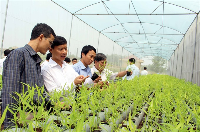 VN farmers told to go organic, shun chemicals