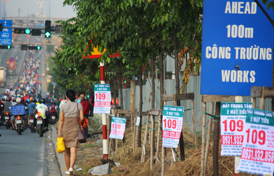 HCM City plastered in illegal advertising