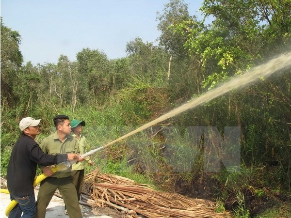 11,000ha of Ca Mau forest at fire risk, environmental news, sci-tech news, vietnamnet bridge, english news, Vietnam news, news Vietnam, vietnamnet news, Vietnam net news, Vietnam latest news, Vietnam breaking news, vn news
