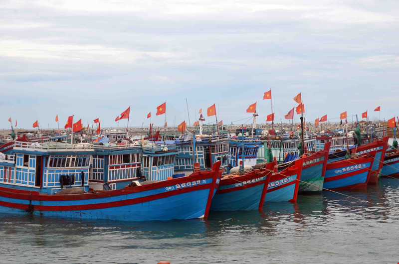 Agriculture Ministry: China's fishing ban in Vietnam's waters is valueless, Government news, Vietnam breaking news, politic news, vietnamnet bridge, english news, Vietnam news, news Vietnam, vietnamnet news, Vietnam net news, Vietnam latest news, vn news