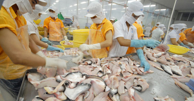 vietnam economy, business news, vn news, vietnamnet bridge, english news, Vietnam news, news Vietnam, vietnamnet news, vn news, Vietnam net news, Vietnam latest news, Vietnam breaking news, tra fish, VASEP, Vietnam-China trade