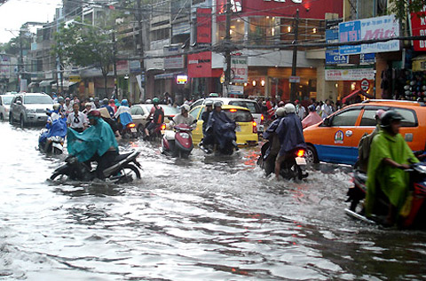 HCM City to strengthen adaptation to climate change, environmental news, sci-tech news, vietnamnet bridge, english news, Vietnam news, news Vietnam, vietnamnet news, Vietnam net news, Vietnam latest news, Vietnam breaking news, vn news