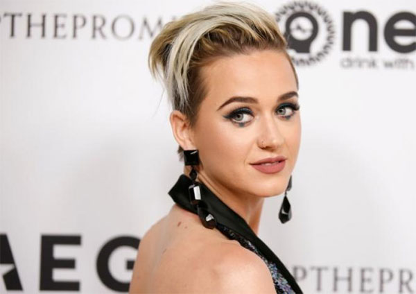 Pop star Katy Perry, singing competition 'American Idol', viewers