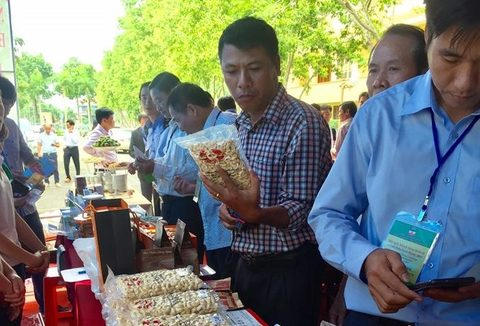 Region eyes global cashew co-operation, vietnam economy, business news, vn news, vietnamnet bridge, english news, Vietnam news, news Vietnam, vietnamnet news, vn news, Vietnam net news, Vietnam latest news, Vietnam reaking news
