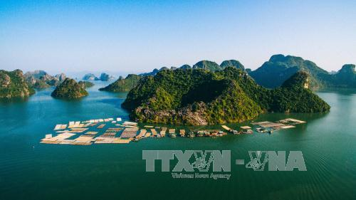 Huge tourism project to be built on UNESCO nature site, environmental news, sci-tech news, vietnamnet bridge, english news, Vietnam news, news Vietnam, vietnamnet news, Vietnam net news, Vietnam latest news, Vietnam breaking news, vn news