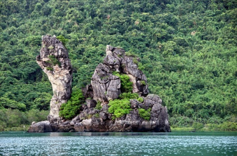 Bai Tu Long National Park becomes ASEAN's 38th heritage park, environmental news, sci-tech news, vietnamnet bridge, english news, Vietnam news, news Vietnam, vietnamnet news, Vietnam net news, Vietnam latest news, Vietnam breaking news, vn news