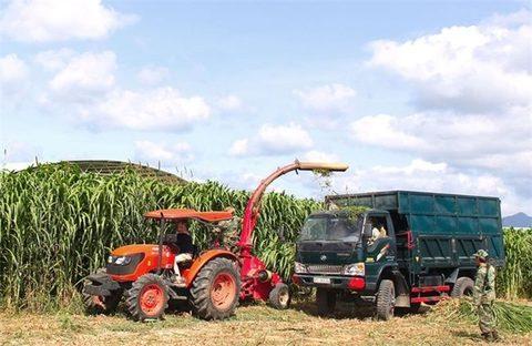 Hoang Anh Gia Lai sells sugar business for $59m, vietnam economy, business news, vn news, vietnamnet bridge, english news, Vietnam news, news Vietnam, vietnamnet news, vn news, Vietnam net news, Vietnam latest news, Vietnam breaking news