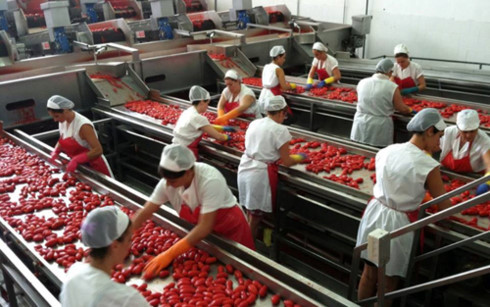 Vietnam steps up equitization to get ready for free trade with EU, vietnam economy, business news, vn news, vietnamnet bridge, english news, Vietnam news, news Vietnam, vietnamnet news, vn news, Vietnam net news, Vietnam latest news, Vietnam breaking news