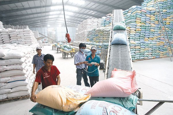 rice production in long an vietnam Since 1963, vietnam and irri have enjoyed a long, fruitful history of  vietnam  and irri are expanding their partnership to include rice production in the upland .