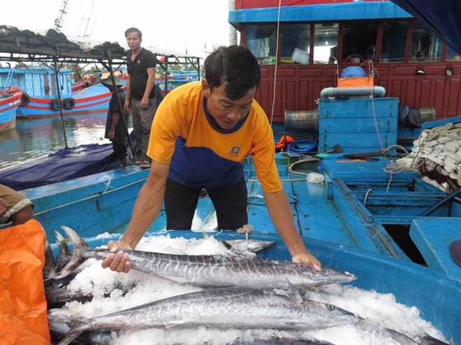 Vietnamese Gov't to prevent fishing in foreign waters, Government news, Vietnam breaking news, politic news, vietnamnet bridge, english news, Vietnam news, news Vietnam, vietnamnet news, Vietnam net news, Vietnam latest news, vn news