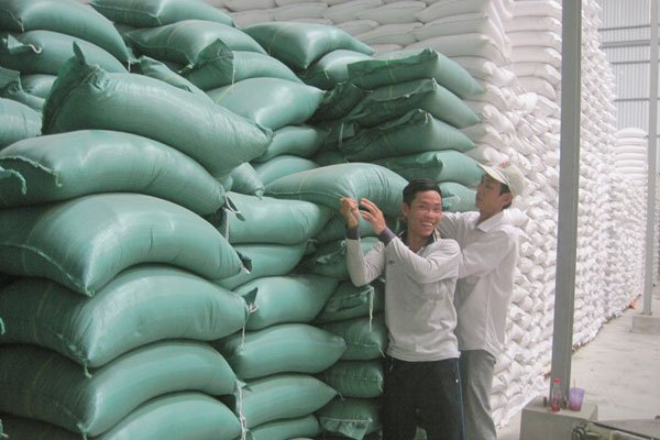 Vietnam rice export back on track, vietnam economy, business news, vn news, vietnamnet bridge, english news, Vietnam news, news Vietnam, vietnamnet news, vn news, Vietnam net news, Vietnam latest news, Vietnam breaking news