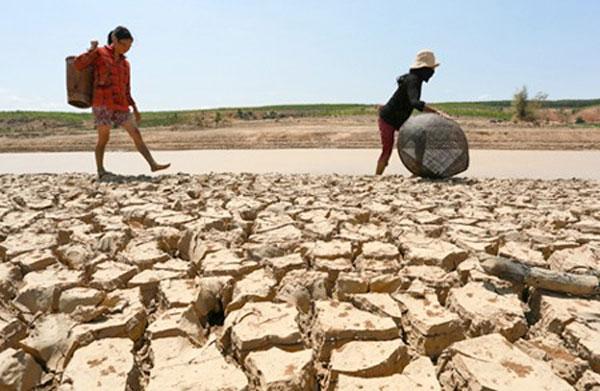 Natural Disaster, climate change, landslide, saltwater intrusion, Vietnam economy, Vietnamnet bridge, English news about Vietnam, Vietnam news, news about Vietnam, English news, Vietnamnet news, latest news on Vietnam, Vietnam