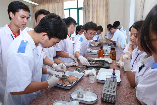 New training programme, improve the quality of healthcare employees, Vietnam economy, Vietnamnet bridge, English news about Vietnam, Vietnam news, news about Vietnam, English news, Vietnamnet news, latest news on Vietnam, Vietnam