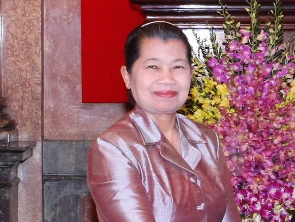 Vietnam supports peace building in Cambodia: senior official, Government news, Vietnam breaking news, politic news, vietnamnet bridge, english news, Vietnam news, news Vietnam, vietnamnet news, Vietnam net news, Vietnam latest news, vn news