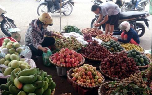 Hanoi to crackdown on fruit street vendors, social news, vietnamnet bridge, english news, Vietnam news, news Vietnam, vietnamnet news, Vietnam net news, Vietnam latest news, vn news, Vietnam breaking news